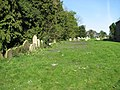 St Mary's church - churchyard - geograph.org.uk - 1270656.jpg