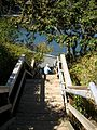 Stairs to North beach. READ INFO IN PANORAMIO-COMMENTS - panoramio.jpg