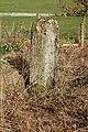 Standing Stone, Bushley Green - geograph.org.uk - 716669.jpg