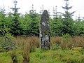 Standing Stone hidden in depths of Sannaig Forest - geograph.org.uk - 1086820.jpg