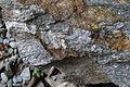 Stein mit relativ frischer Bruchfläche bei Sibiel.JPG