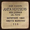 Stolperstein für Anita Herzberg (Cottbus).jpg