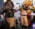 Stomper and Sluggerrr dance on the Good Morning America set. -GMAMascotMadness (26145887126).jpg