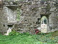 Stone Wall, Coole Upper Two Churches, North Cork..JPG