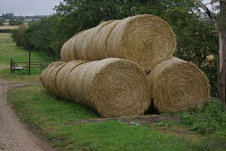 Straw - Large round straw bales