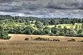 Sussex countryside (25262425867).jpg