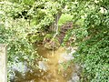 Swinging times in Tonge - geograph.org.uk - 1062840.jpg