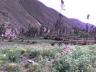 Tarma - Image: Tarma Province, Peru panoramio Tours Centro Peru (1)