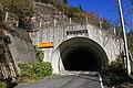 Tatsubara Tunnel (Route 418).jpg
