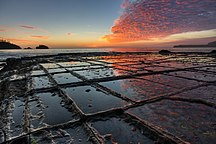 Tasmania-Physical history-Tessellated Pavement Sunrise Landscape