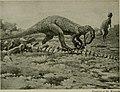 The American Museum journal (c1900-(1918)) (18160059355).jpg
