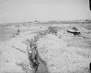 56th (London) Infantry Division - Troops of the 1/5th Battalion, London Regiment (London Rifle Brigade), in a reserve trench in Chimpanzee Valley between Hardecourt and Guillemont, 6 September 1916.
