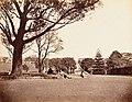 The Domain, Sydney (1870s).jpg