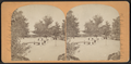 The Esplanade, Central Park, N.Y, from Robert N. Dennis collection of stereoscopic views.png