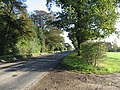 The Road To Hingham - geograph.org.uk - 293186.jpg