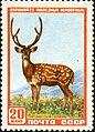 The Soviet Union 1957 CPA 1989 stamp (Sika Deer).jpg