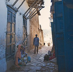 The Streets of Harar (Detail) (2776526736).jpg