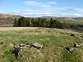 The broch at Torwoodlee - geograph.org.uk - 751453.jpg