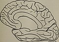 The journal of mental pathology (1901) (14782286304).jpg