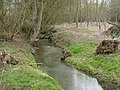 The river Ter at Little Leighs - geograph.org.uk - 1751427.jpg