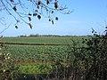 Three Shires Way - geograph.org.uk - 607433.jpg