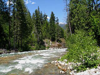 Thunder Creek (Washington)