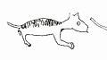 Thylacoleo carnifex cave art.jpg
