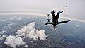Tomasz Wojciechowski, Freeflying (Headdown) (1).jpg