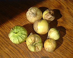 Fresh harvest of German tomatillos