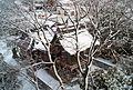 Tottori snow.jpg