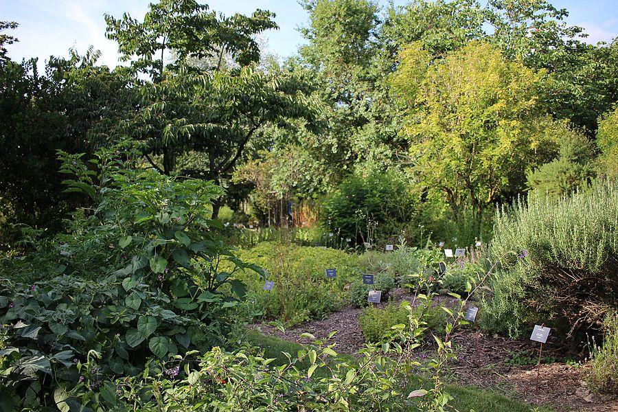 Tours - Paysage du Jardin Botanique (05).jpg