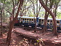 Toy Train matheran.jpg