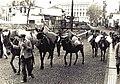 Transporte com mulas na Rua do Príncipe, Funchal.jpg