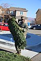 Trees for Troops comes to MCLB Barstow for a 9th time 131206-M-TJ398-001.jpg