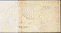 Trichechus rosmarus - skelet - 1700-1880 - Print - Iconographia Zoologica - Special Collections University of Amsterdam - UBA01 IZ21100005.tif