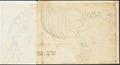 Trichechus rosmarus - skelet - 1700-1880 - Print - Iconographia Zoologica - Special Collections University of Amsterdam - UBA01 IZ21100005.tif