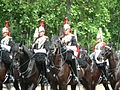 Trooping the Colour 2006 - P1110241 (169171638).jpg