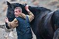 Turkmen Studfarm - Flickr - Kerri-Jo (34).jpg