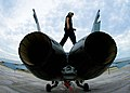 US Navy 061102-N-5240C-004 Airman Robert Leggett of Strike Fighter Squadron Three Seven (VFA-37) performs a routine turnaround inspection on an F-A-18 Hornet at Naval Air Station Key West.jpg