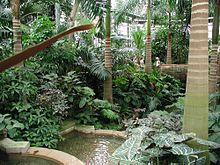 us botanic garden 2jpg - Us Botanic Garden