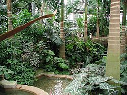 Garden Plus Dat Belle Ville