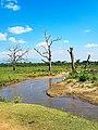 Udawalawe National Park Landsace.jpg