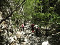 Ulaz u Mudnu dol - panoramio.jpg