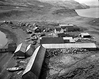 Popof Island - Union Fisch Co. codfish station at Pirate Cove on Popof Island, June 1912