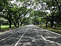 University of the Philippines - academic oval (Diliman, Quezon City; 07-27-2020).jpg
