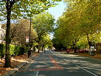 Upper Chorlton Road in the autumn.jpg