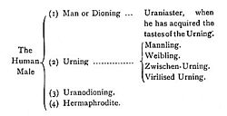 Clasificación del Uranismo en A Problem in Modern Ethics (1891) de John Addington Symonds.