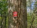 Vörden - Campemoor - Wegemarkierung 01.jpg