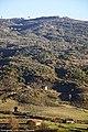 Vale da Ribeira do Caldeirão - Portugal (18039662899).jpg