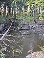Vantaa river (10-2008) - panoramio - pan-opticon (3).jpg